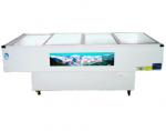 富雪岛海鲜柜TCD26-200/A  平面 (单机)