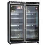 风格消毒柜/风格双门消毒柜FXA-900  商用消毒柜