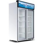 穗凌展示柜LG4-882M2F  豪华型立式   单温风冷二门