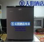 德莱维酒店客房冰箱DW30/DW40/DW50 吸收式 碳灰色