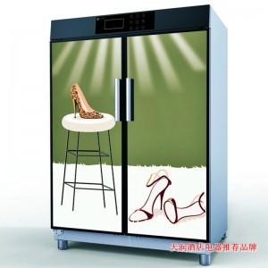丽彩(LIZE)双门鞋柜丨消毒鞋柜丨热风烘干鞋柜丨干衣柜丨干衣机订制