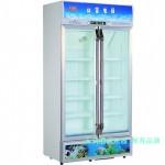 白雪展示柜SC-400FA 白雪冰柜 双门冷藏展示柜  饮料展示柜 茶叶展示柜