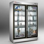 昌和CH-YTD-680B双门消毒柜 低温臭氧消毒柜 玻璃门餐具消毒柜 大碗柜