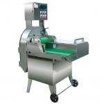 大型切菜机TS-6  商用切菜机