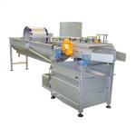 旋流洗菜机SN-3000VRH   蔬菜清洗设备 净菜加工生产线
