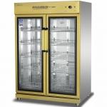 康煜YTP-1300B低温消毒柜 双玻璃门消毒柜 商用餐具消毒柜