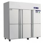 奥斯特六门单温冷冻冰箱TF6  不锈钢六门冷冻柜