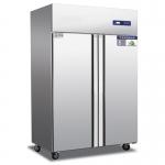 奥斯特二门冰箱TFX2 不锈钢二门冷冻柜 大双门冷冻冰箱
