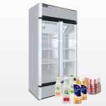 LIZE/丽彩双门冷热展示柜 冷热展示柜 多功能展示柜