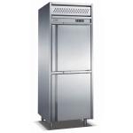 LIZE二门冰箱 高身二门冷冻柜 风冷无霜不锈钢冷柜