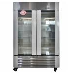 冰立方冷冻展示柜 低温双大门展示柜