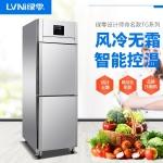 LVNI绿零二门高身冷冻柜TG-0.5L12FD 风冷无霜冷冻冰箱 上下门冷柜